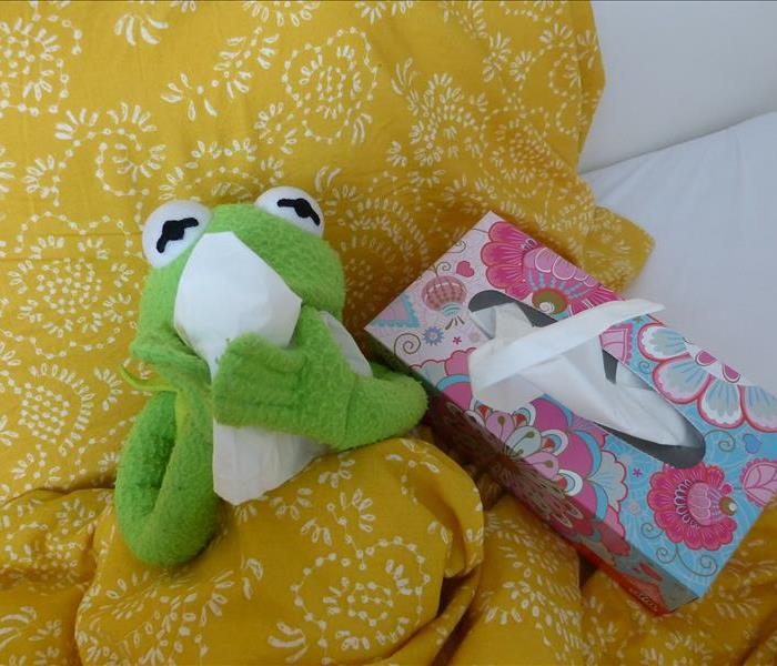 A green frog plush posed as if blowing his nose on a kleenex