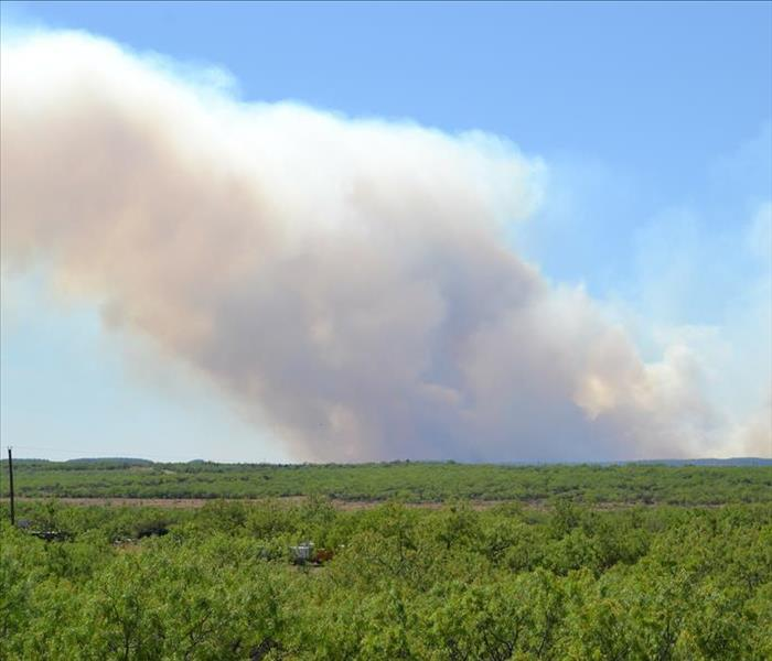 Black smoke from a wildfire rising against a blue sky